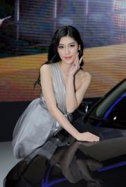 2016中国南京国际汽车慱览会车模